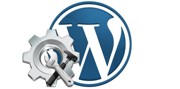 assistenza-wordpress-torino
